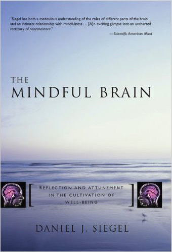the-mindful-brain